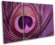Peacock    PURPLE PINK Abstract - 13-0749(01C)-TR32-LO